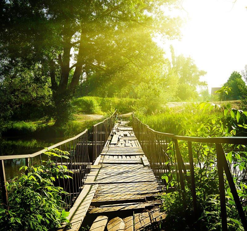 Träbro över floden royaltyfri foto