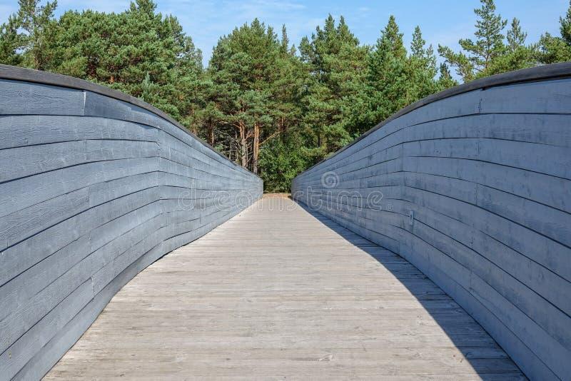 Träbro, gångbana över vägen in till en skog royaltyfri bild