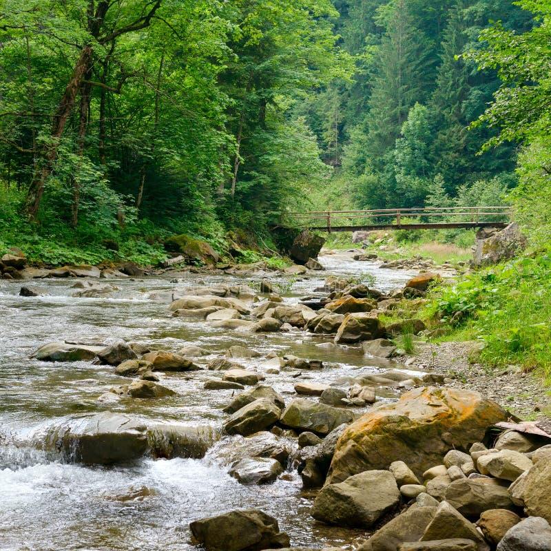 Träbro i bergfloden carpathians arkivbilder