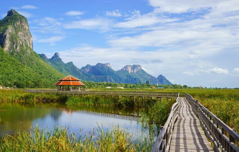 Träbro i lotusblommasjön på nationalpark för yod för khaosam roi, t royaltyfria bilder