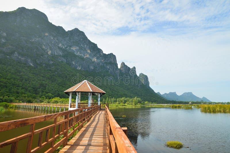 Träbro i lotusblommasjön på nationalparken för yod för khaosam roi, Thailand fotografering för bildbyråer