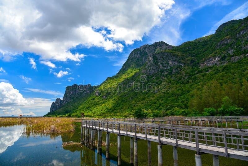 Träbro i sjön som omger vid den guld- ängen royaltyfri fotografi