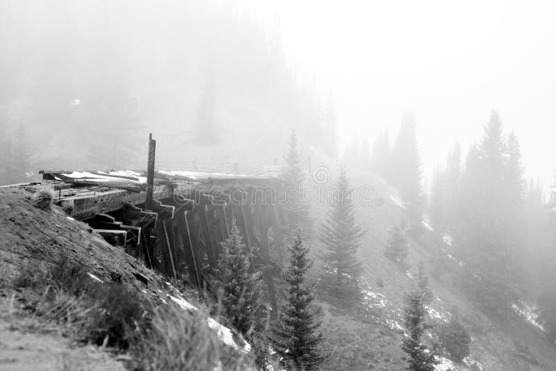 Träbro i skogen med tung dimma royaltyfria foton