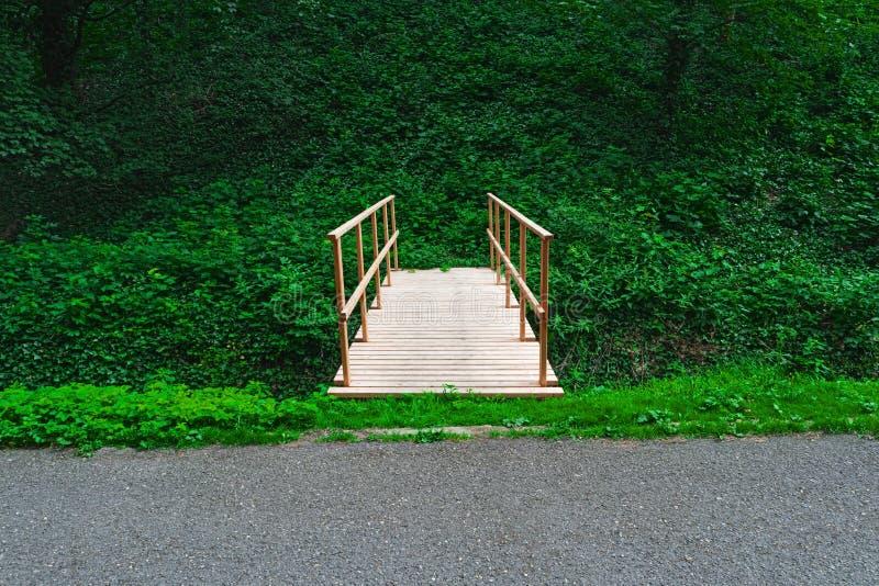 Träbro i tropisk regnskoggångbana arkivfoton