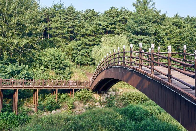 Träbro och bana allt leda in i skogen i den Uirimji behållaren på Jechun, Sydkorea royaltyfria foton
