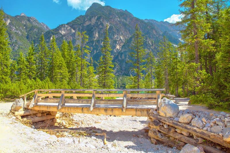 Träbro och berg royaltyfri bild