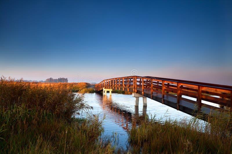Träbro på soluppgången royaltyfri fotografi