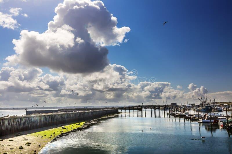 Träbrofiskprocessorn Westport grånar hamnen Washington arkivfoto