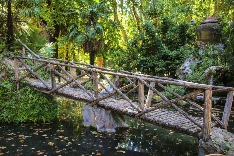 Träbron över ett damm i ett av parkerar arkivbild