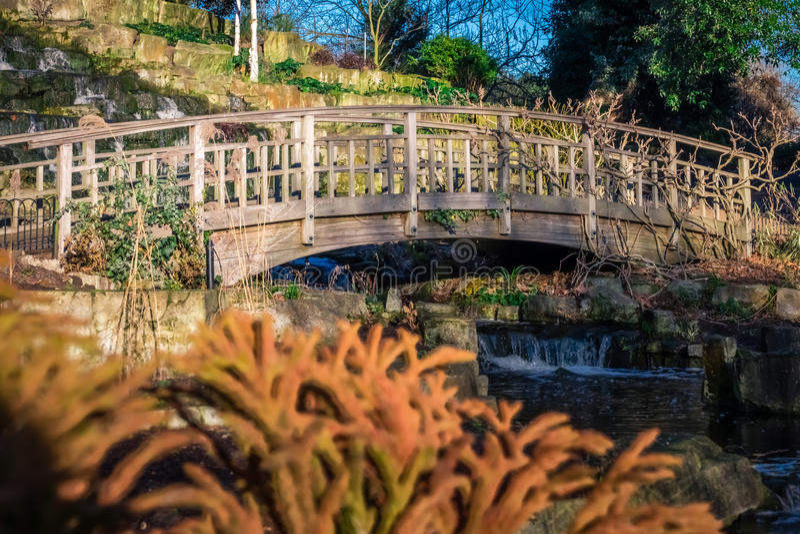 Träbron i regenter parkerar royaltyfria bilder