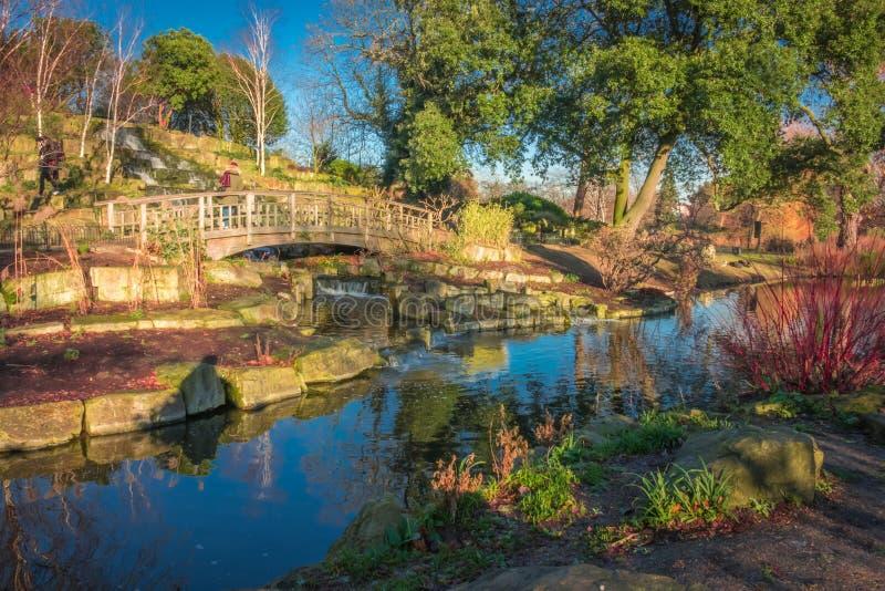 Träbron i regenter parkerar royaltyfri foto