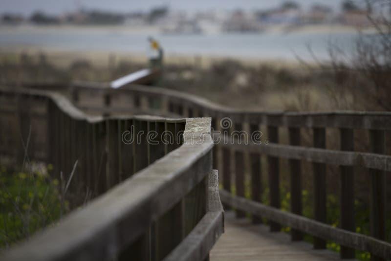 Träbron marin parkerar olhao royaltyfri fotografi