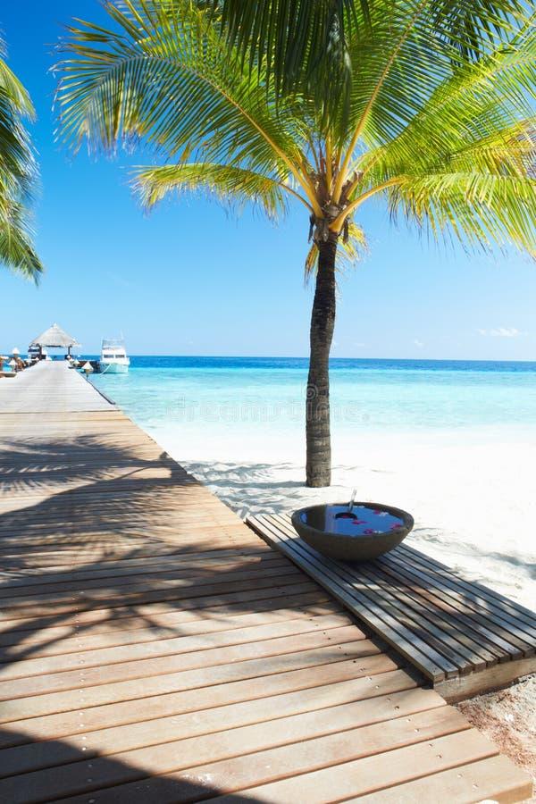 Träbrygga på öde tropisk Palm Beach i Maldiverna royaltyfri fotografi