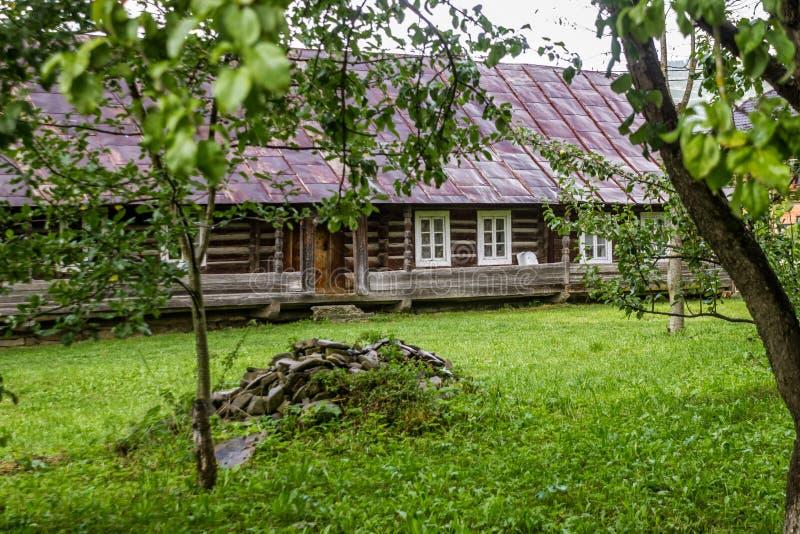Träbygdkoja med gräs arkivbild