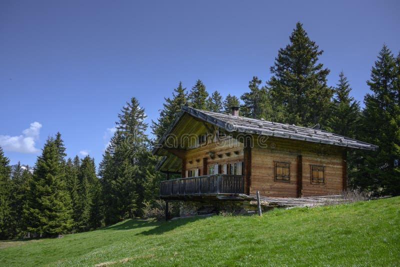 Trächalet på grön bergäng i fjällängar av Alto Adige, södra Tyrol, royaltyfri bild
