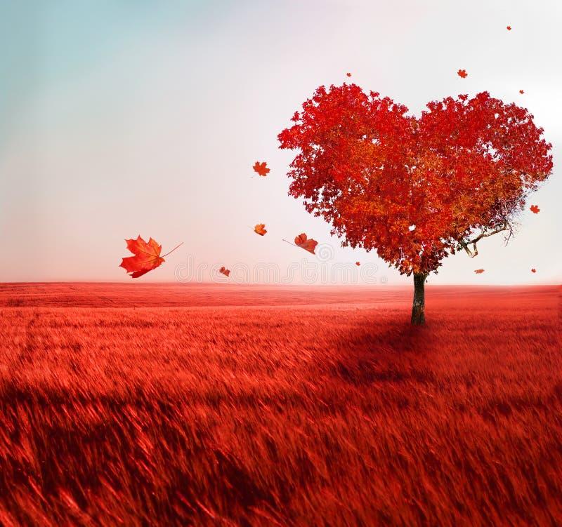 Träd av förälskelse royaltyfri fotografi