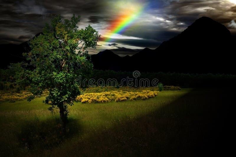 Träd av hopp i mörker arkivfoto