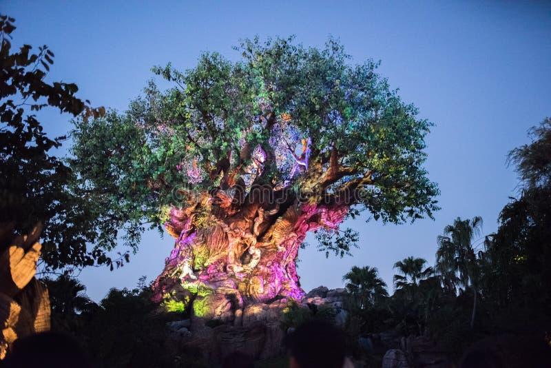 Träd av liv på djurriketen på Walt Disney World arkivbild
