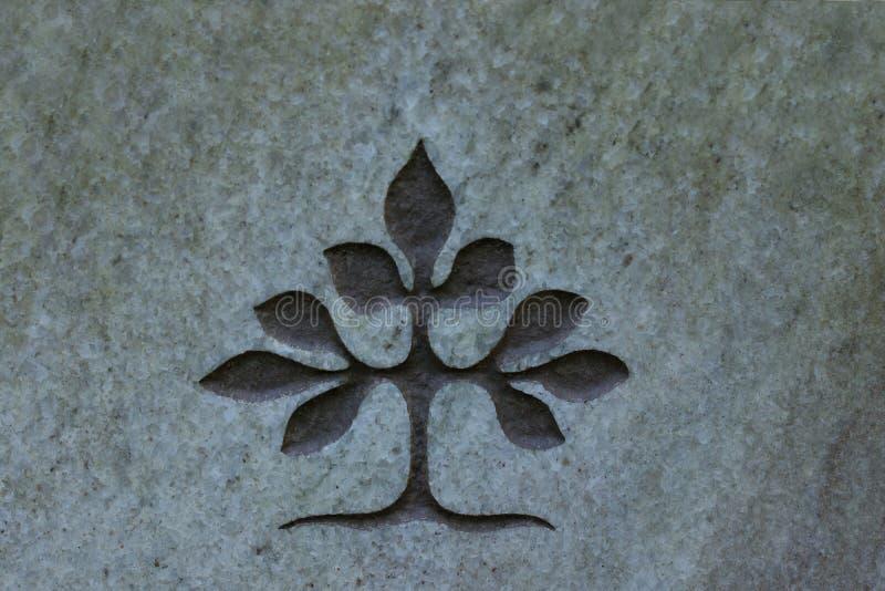 Träd av liv som snidas in i stenyttersida fotografering för bildbyråer