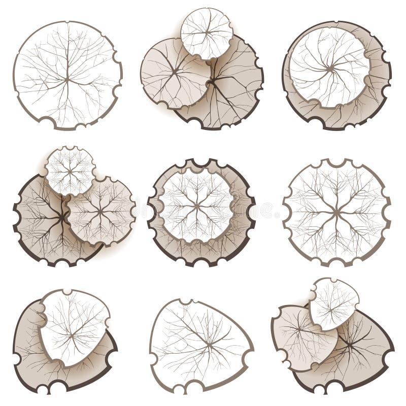 Träd - bästa sikt royaltyfri illustrationer
