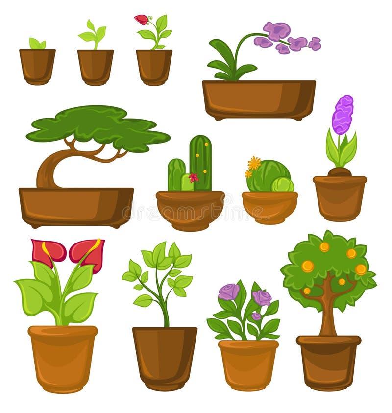 Träd för inomhus växter och blommor kaktus och bonsaicalla och ros vektor illustrationer