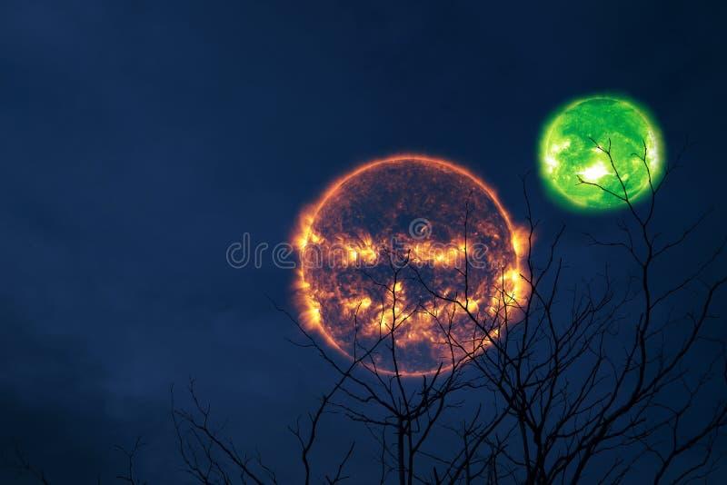 träd för kontur för baksida för orb för halloween solgräsplan och natthimmel arkivbild