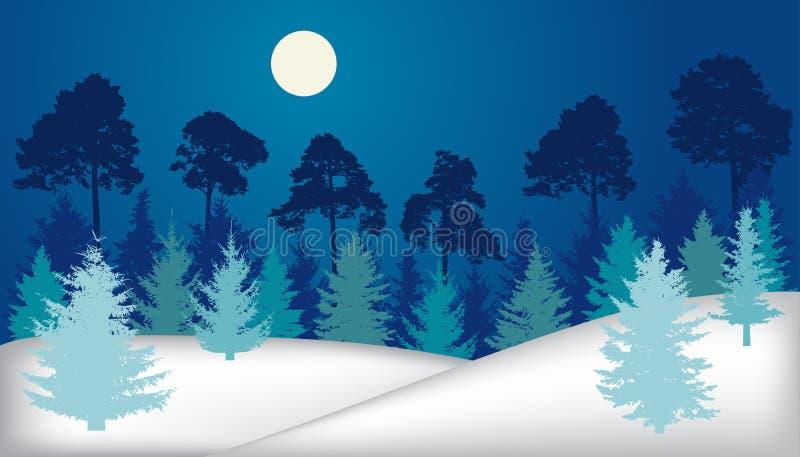 Träd för nattskoggran, sörjer, övervintrar landskapet, kontur royaltyfri illustrationer