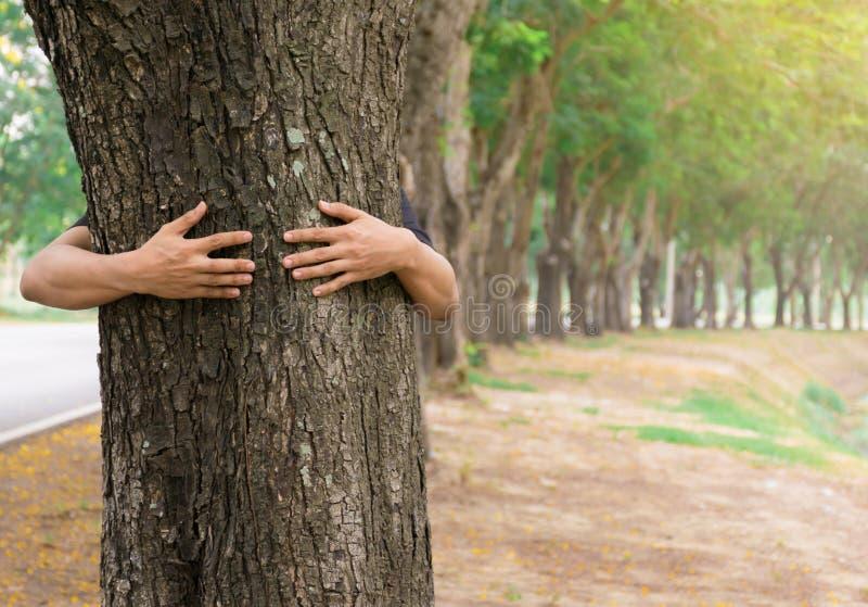 Träd för skogar för förälskelse för träd för kram för man för ekologibegreppshand arkivbilder