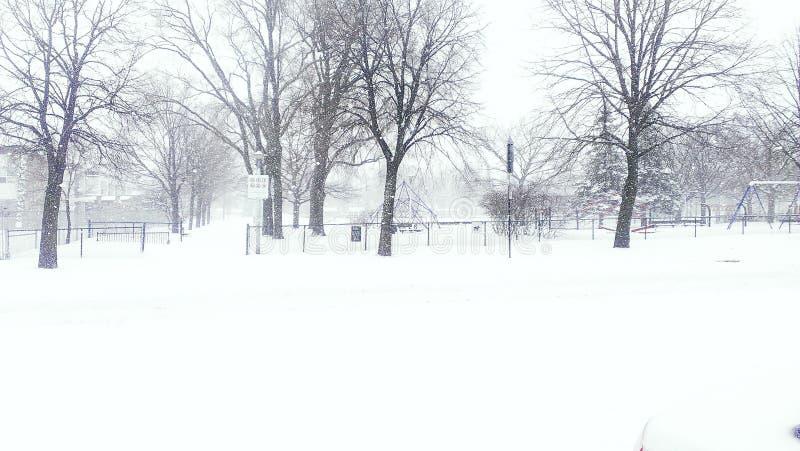 Träd för storm för snöparcvinter arkivbilder