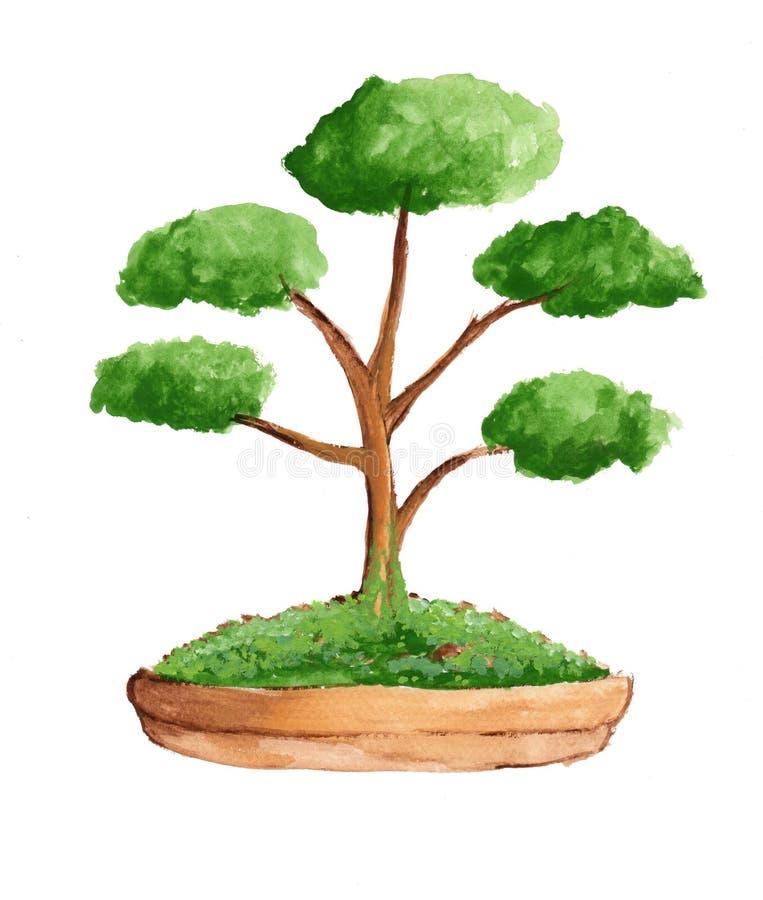 Träd för vattenfärg i brun kruka vektor illustrationer