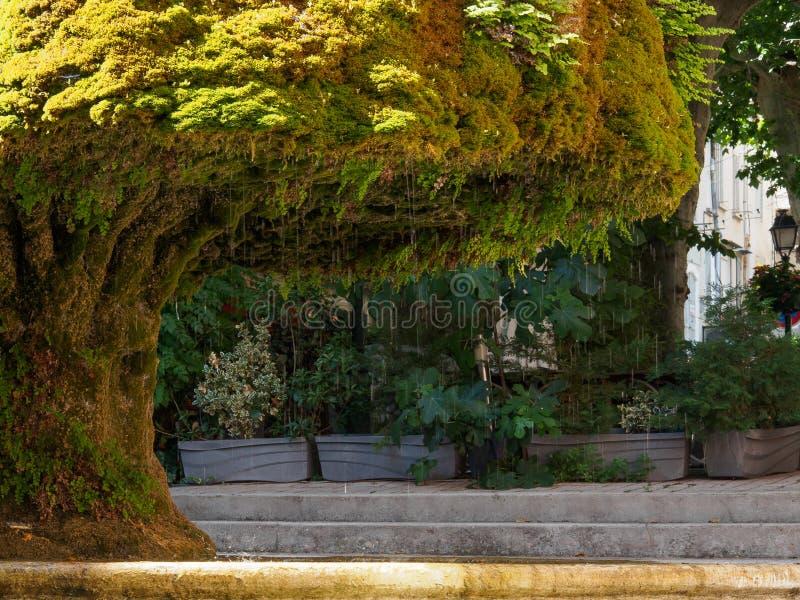 Träd formad springbrunn arkivfoton