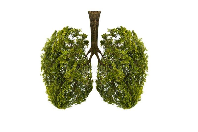 Träd-formade bilder för lunga gräsplan, medicinska begrepp, obduktion, skärm 3D och djur som en beståndsdel royaltyfri illustrationer