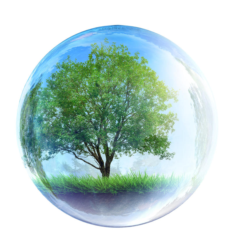 Träd i den glass bubblan arkivfoto