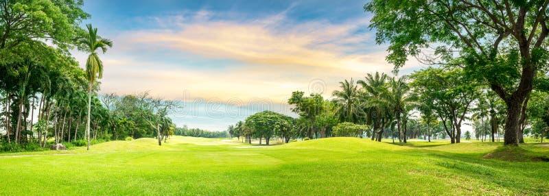 Träd i golfbana arkivbild