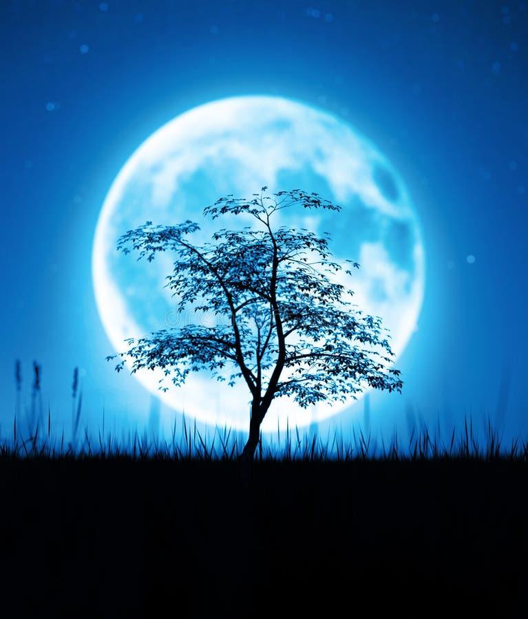 Träd i gräsfält på natten mot månen stock illustrationer