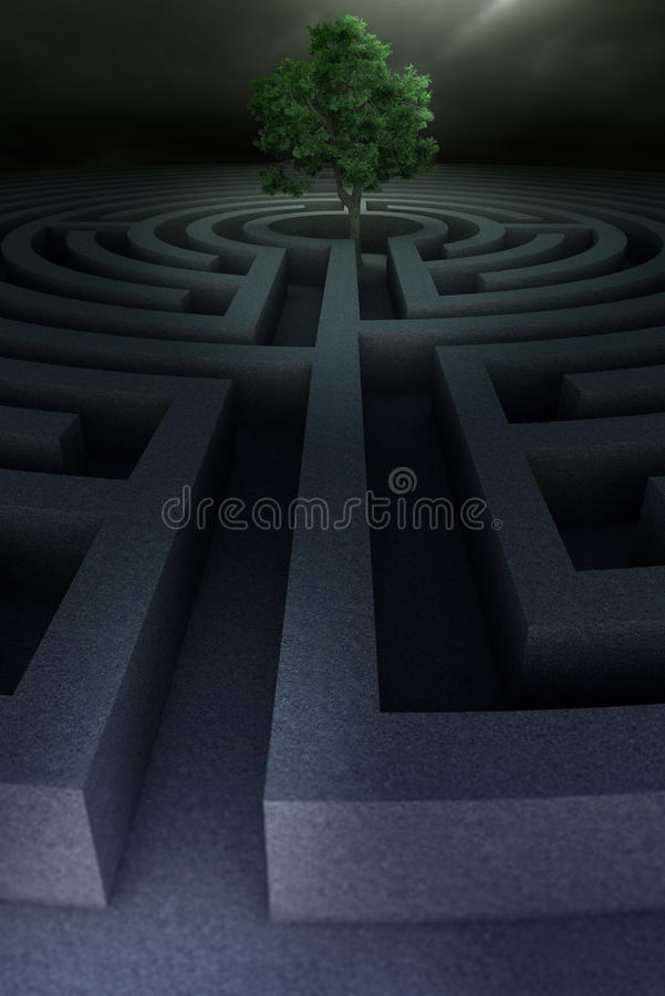 Träd in i labyrinten royaltyfria bilder