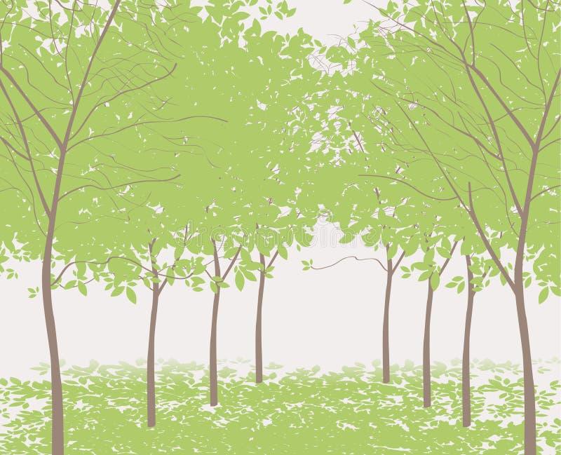Träd i parkera royaltyfri illustrationer