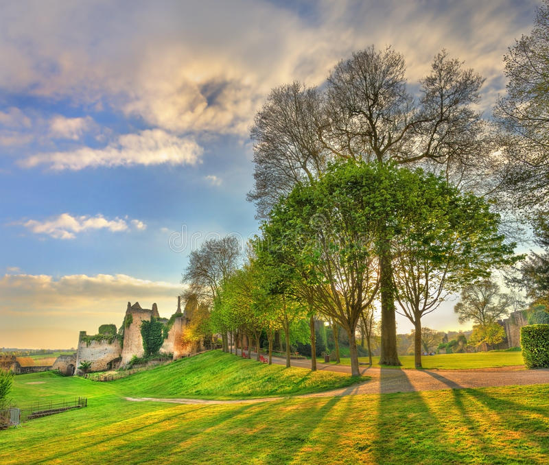 Träd i parkera på chateauen de Bressuire france arkivbild