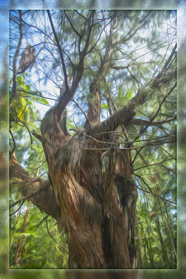 Träd i skogen och i en glass ask arkivfoto