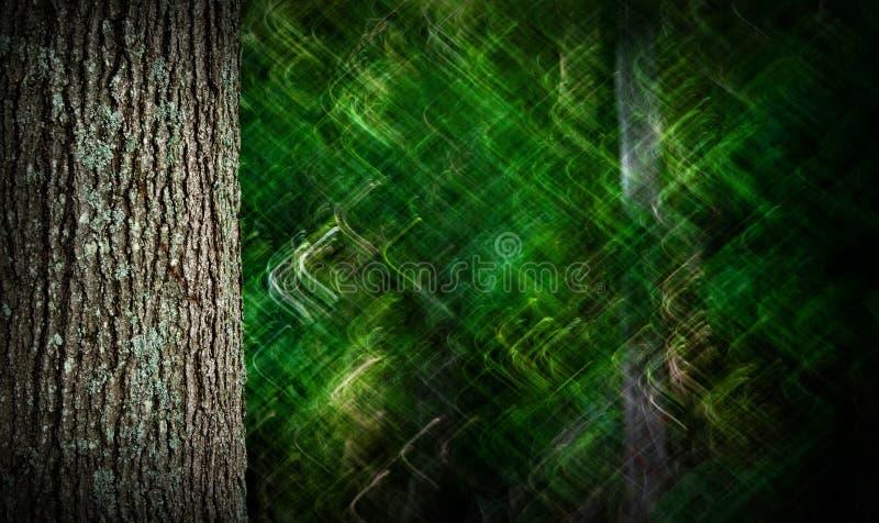 Träd med creatively suddig bakgrund royaltyfri foto