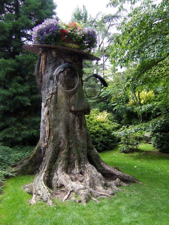 Träd med cykeln royaltyfri bild
