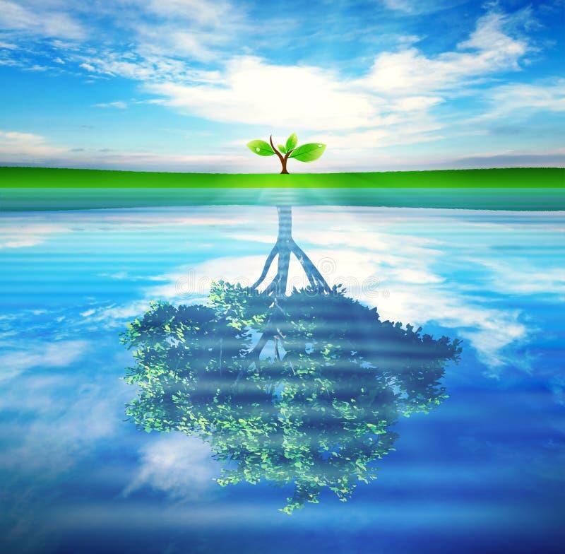 Träd med reflexion i vattenbegreppet för tillväxt, framgång vektor illustrationer