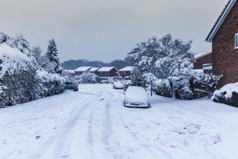 Träd och bilar som täckas i insnöade Förenade kungariket royaltyfri foto
