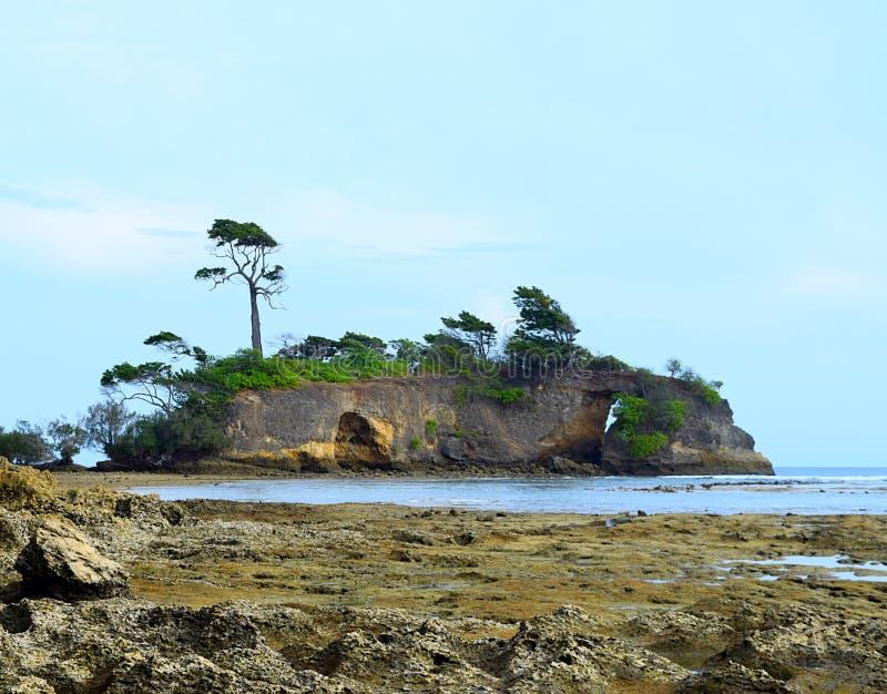 Träd och grönska över en ö i havet med kusten med Coral Stones i förgrund, Neil Island, Andaman - Holm eller Skerry arkivbild