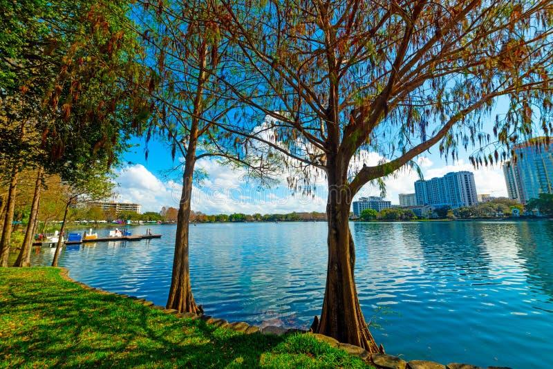Träd och grönt gräs vid den sjöEola kusten i Orlando royaltyfria foton