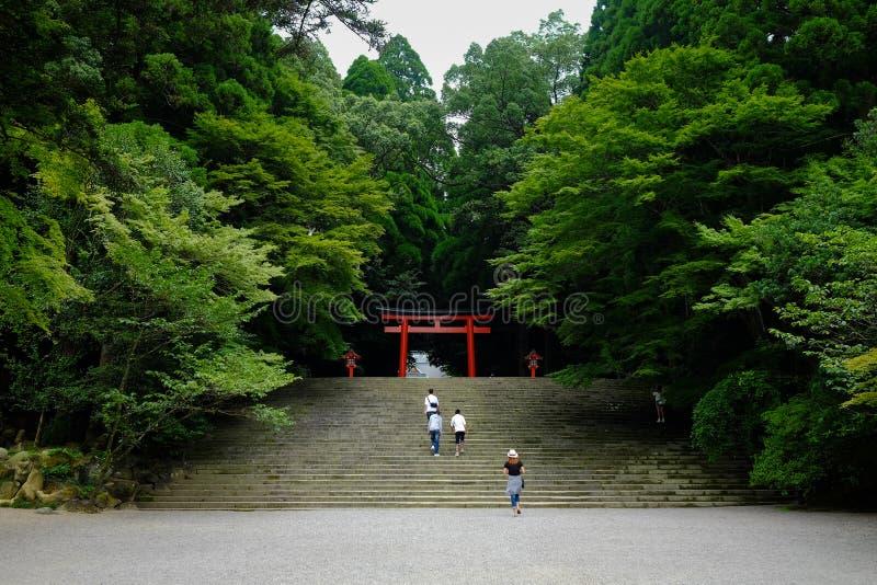 Träd och Japan torii royaltyfri foto