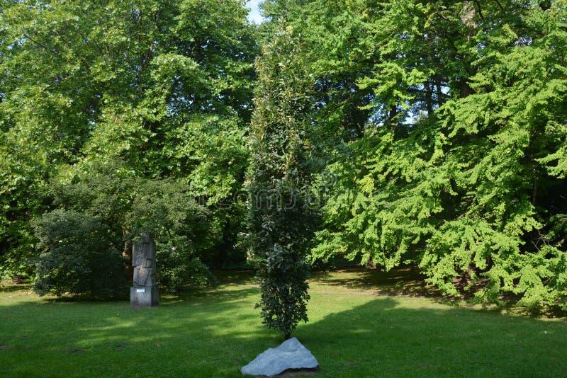 Träd och stenskulptur i parkera arkivfoto