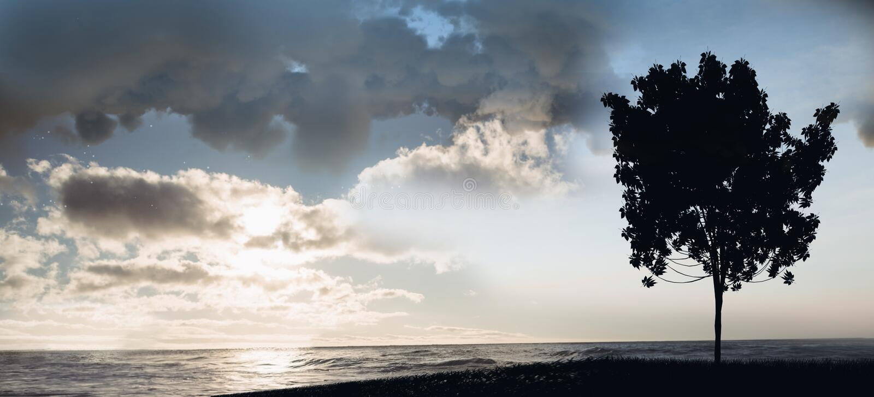Träd på solnedgång på lakefront arkivbilder