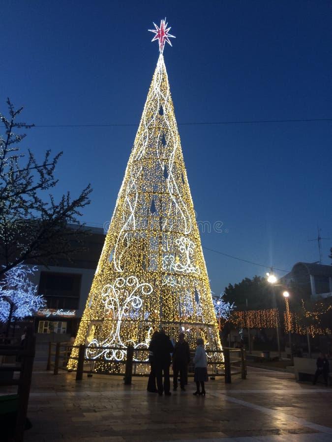 Träd som göras ut ur ljus arkivfoto