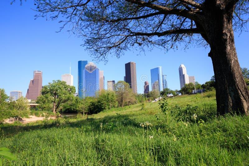 Träd som inramar sikt av den i stadens centrum Houston staden, Texas i ett härligt royaltyfri fotografi